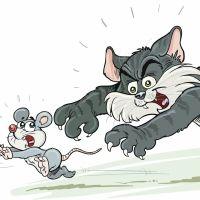 La ratonera. Cuento para explicar el terrorismo a los niños