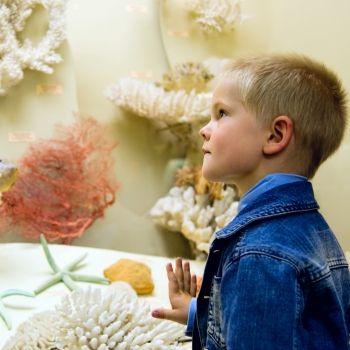 Los mejores museos para niños en diferentes países del mundo