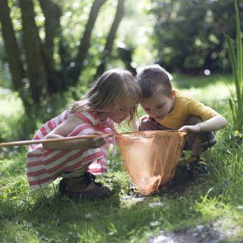 5 errores que cometen los niños en la naturaleza