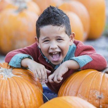 Beneficios de la calabaza para los niños