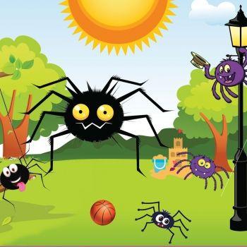 La araña Ochopatas