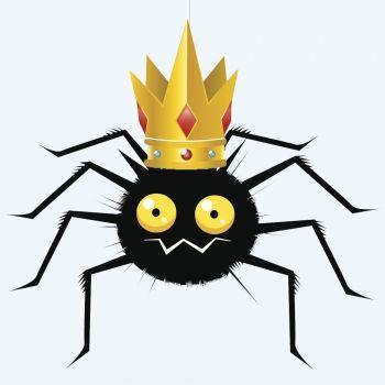 La araña. Leyenda Quechua para niños