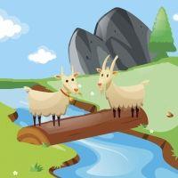 Las dos cabras. Fábula corta para niños sobre la terquedad