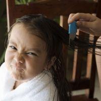 Eliminar los piojos del pelo de los niños paso a paso