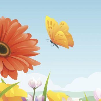 Volando vas mariposa