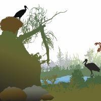 El nido de las cigüeñas. Cuento infantil sobre el esfuerzo