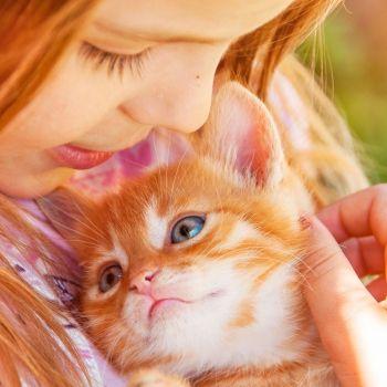 Beneficios para los niños de adoptar un gato