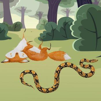 La zorra y la serpiente