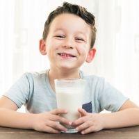 Alimentos de origen animal imprescindibles en la dieta mediterránea para niños