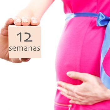 12 semanas de embarazo