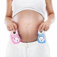¿Niño o niña? Ya se puede saber en el segundo mes de embarazo