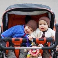 6 claves para elegir un carrito para gemelos
