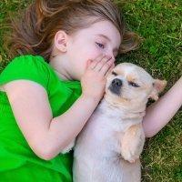 Qué es un amigo para un niño