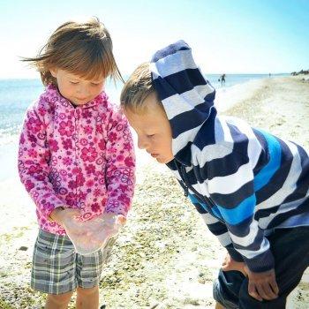 Las medusas y sus picaduras en los niños