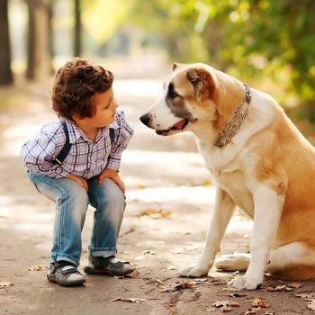 La empatía de los niños por los animales