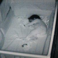 Cuidado con el hackeo de las cámaras de vigilancia de bebés