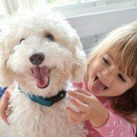Las mascotas, los mejores amigos de los niños