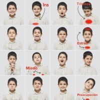 Cómo afectan las emociones a la salud de tu hijo