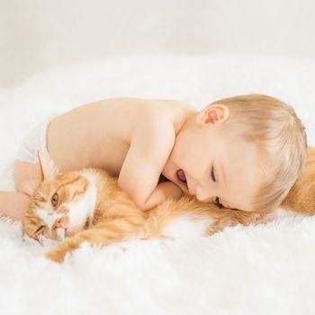 Niños que conviven con perros y gatos tienen menos riesgo de padecer asma