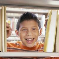 Los mejores sistemas de educación alternativa para los niños. Diferencias entre ellos