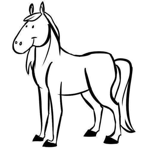 Adivinanza: ¿Cuál es el animal que tiene silla?