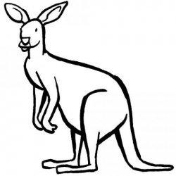 El canguro