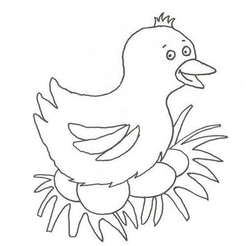 Adivinanza: ¿Cuál es el ave que pica en la granja?