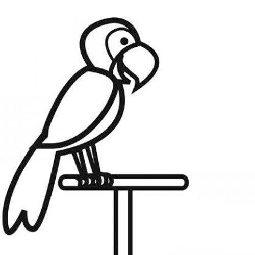 Adivinanza: Tengo alas y pico