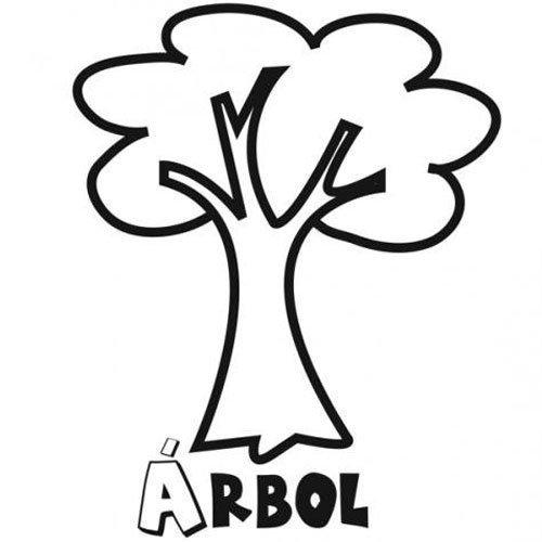 Adivinanza es un rbol muy alto de estrecha copa for Nombres de arboles en ingles