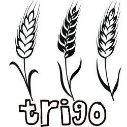 El trigal / el trigo