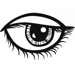Las pupilas