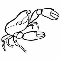 El cangrejo