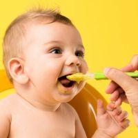 Recetas de purés nutritivos para bebés