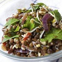 Ensalada de lentejas y soja, fresca y sana