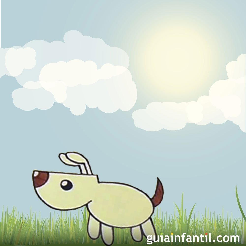 Como Tratar La Mordedura De Un Perro En Los Ninos
