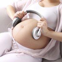 Aparato auditivo del feto