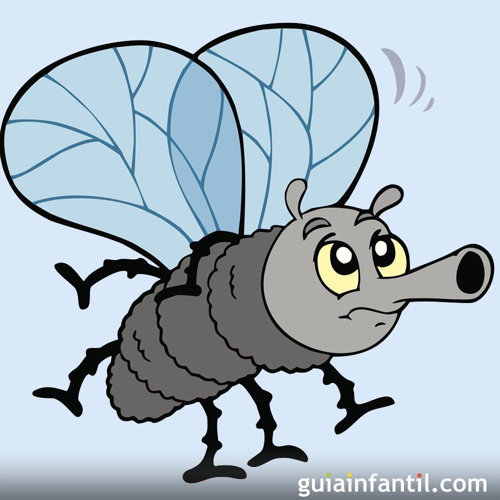 Lengua De Signos Aprende Los Insectos