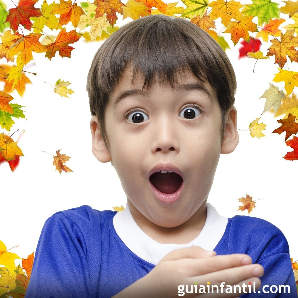 Vocabulario de primavera y otoño en la lengua de signos para niños