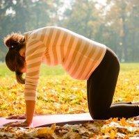 Gimnasia para el embarazo, ejercitar la columna vertebral