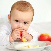Cuándo introducir alimentos sólidos en la dieta del bebé