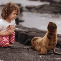 Las preguntas de los niños sobre los osos marinos