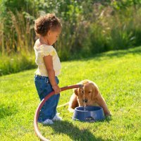 Una niña nos enseña cómo se refresca a un perro en verano