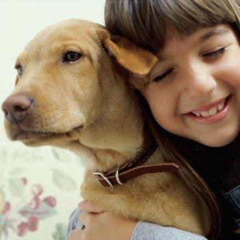 El miedo a los perros en los niños