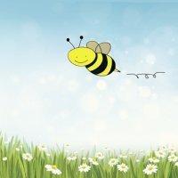 Cómo dibujar una abeja. Dibujos para niños