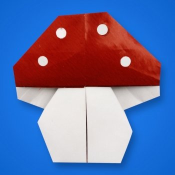 Seta de origami