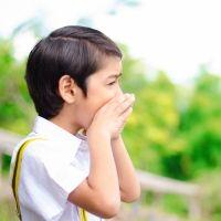 Curiosidades sobre el Eco para niños