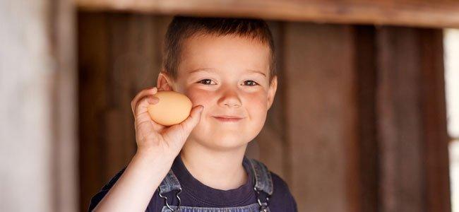 Alergia al huevo en la infancia
