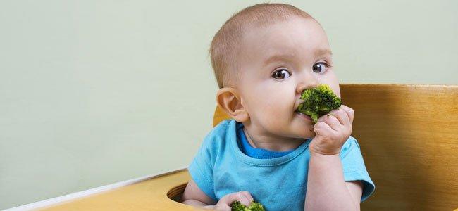 Bebé come brócoli