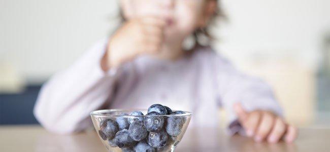 Niño come arándanos
