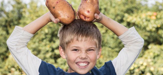La patata, alimento esencial en la dieta del niño